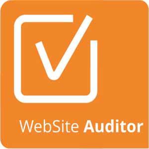 logotipo website auditor